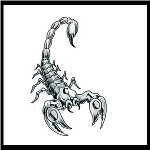 Scorpio.net | - Scorpio Information and Compatibility